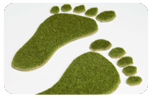 picture of Green footprints