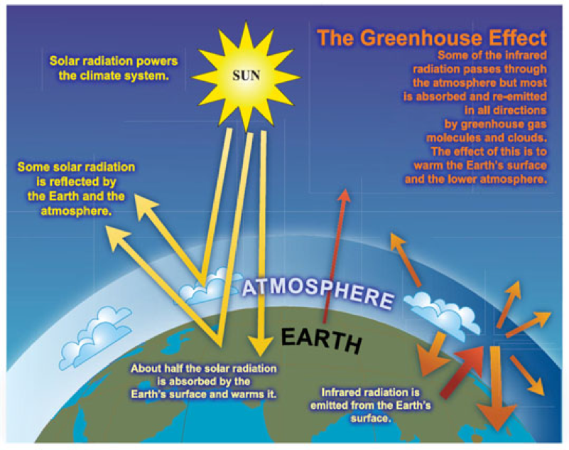 Greenhouse Effect Process